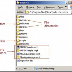 外汇EA文件的安装和使用